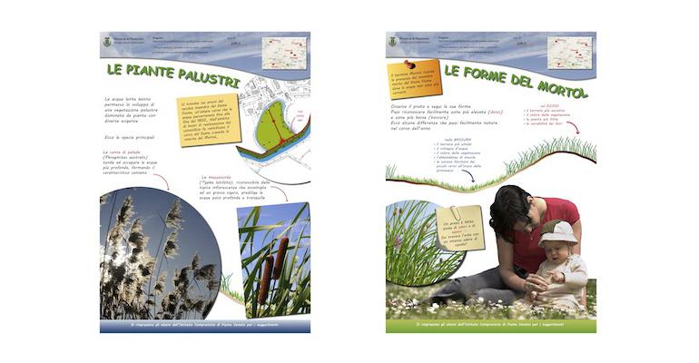 allestimenti_bosco_e_rifiuti_le_piante_palustri