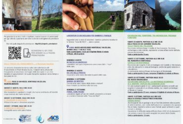 Tutte le iniziative dell'Estate al MAMV – 2020